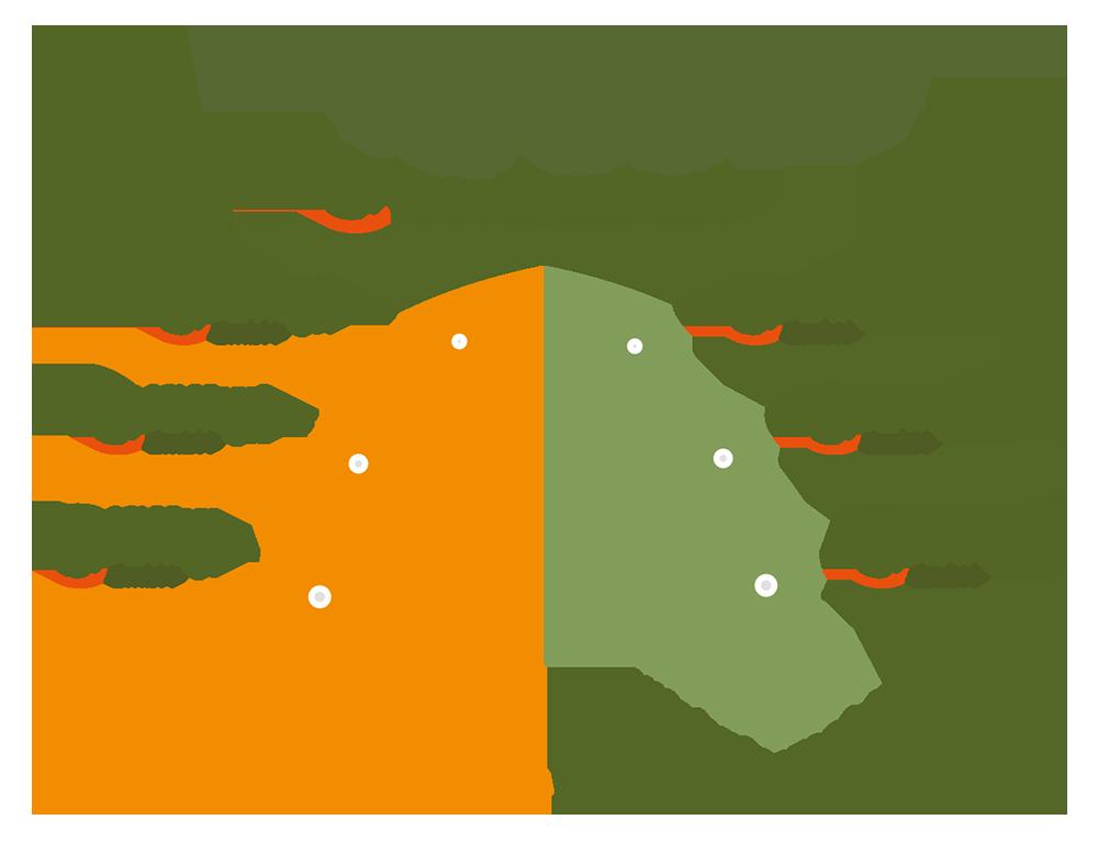 SGI Development Projektstruktur